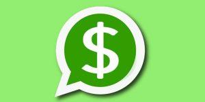 whatsapp business cobrar servicios